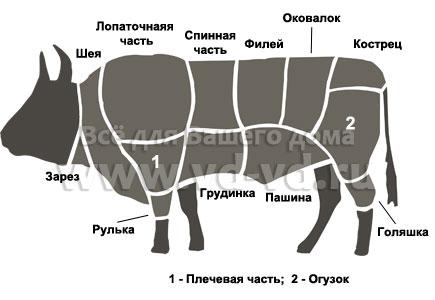 Части туши говядины
